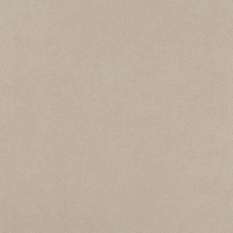 Arkshade-Dove-24x24-AUGA