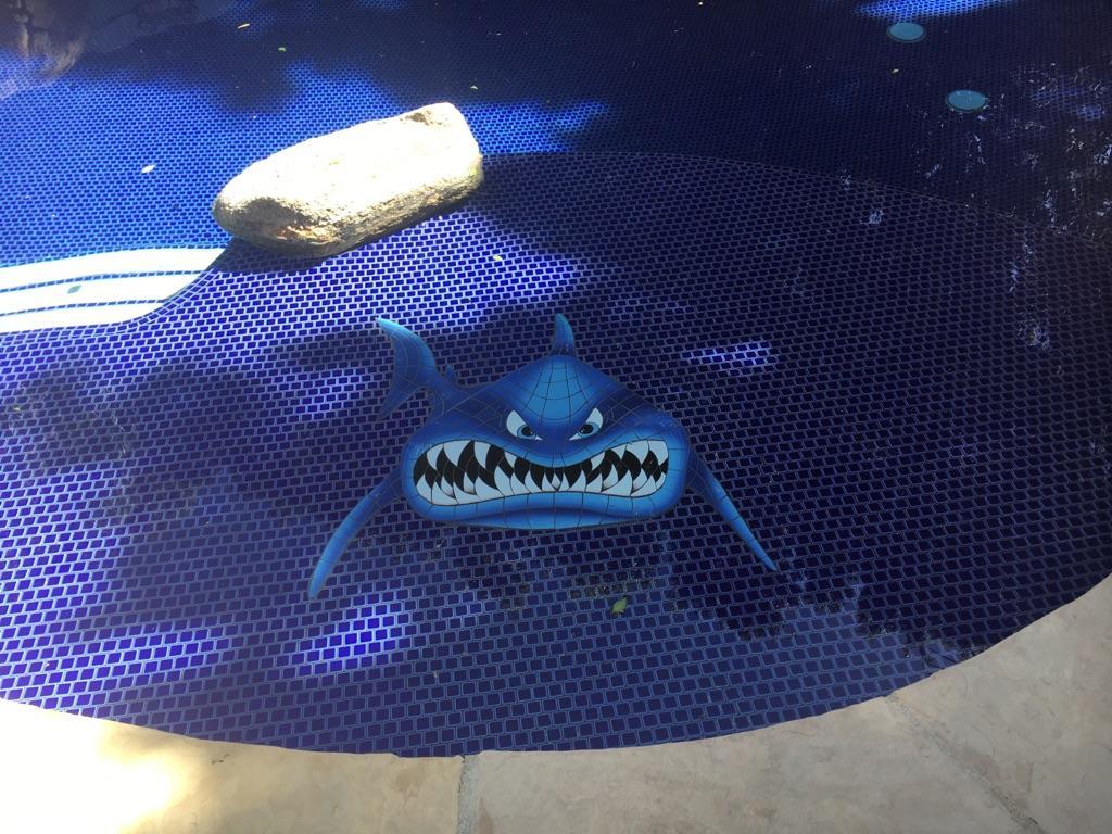 App-Ceramic-In-Your-Face-Shark-SIFBLUL