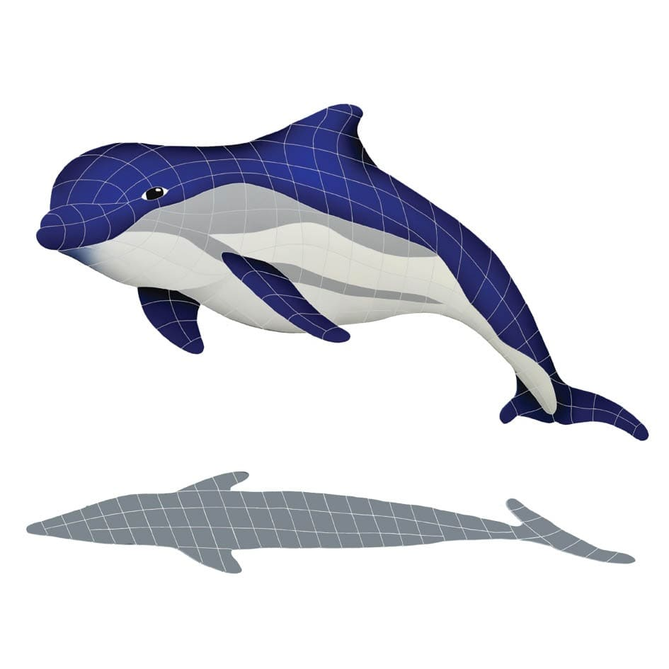 Bottlenose-Up-Dolphin-with-shadow-111215