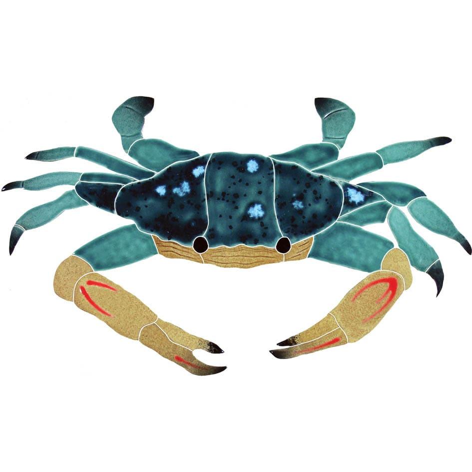 Crab-Blue-swimmer-CBSMCOOS