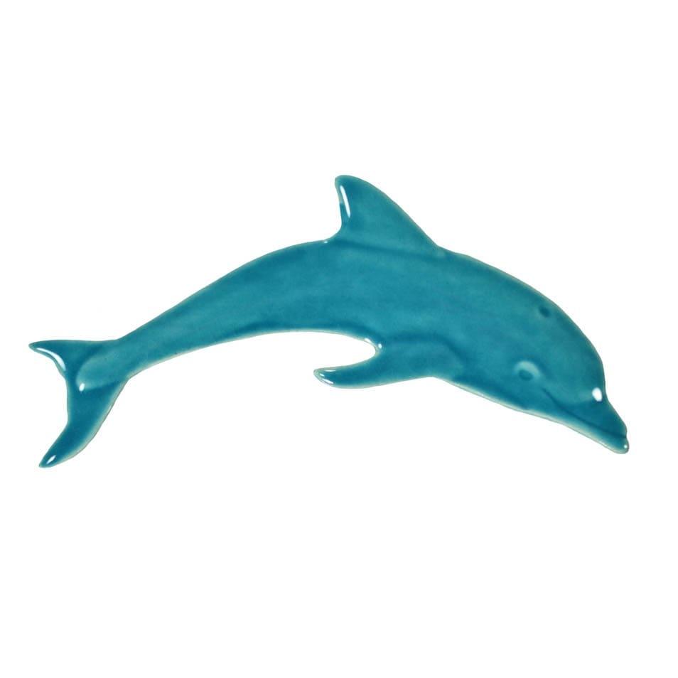 Dolphin-mini-aqua