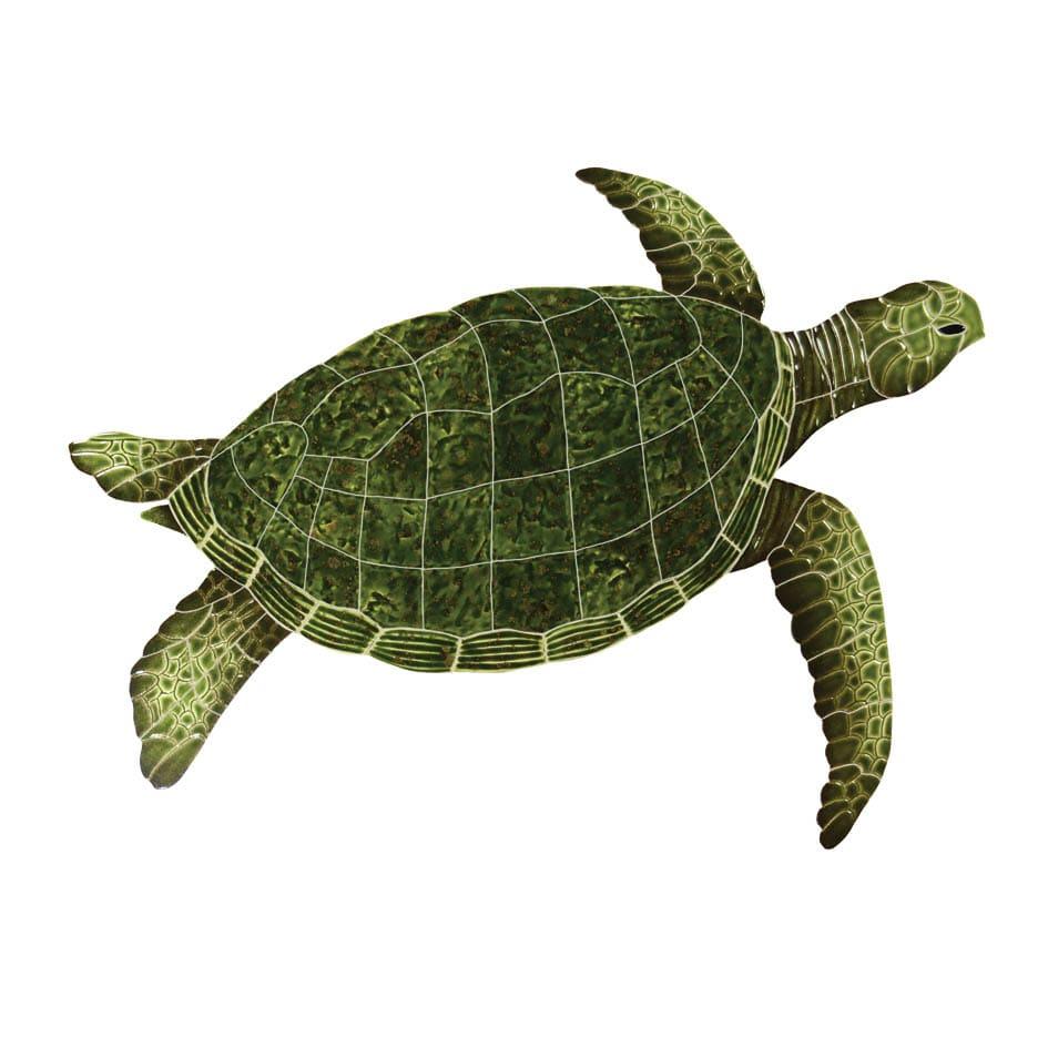 Sea-Turtle-green-large2015