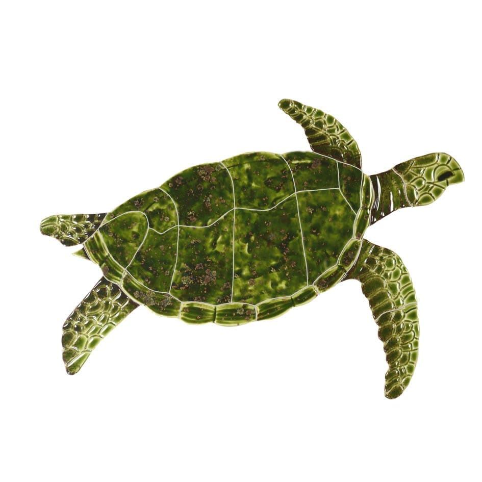 Sea-Turtle-green-small-2015
