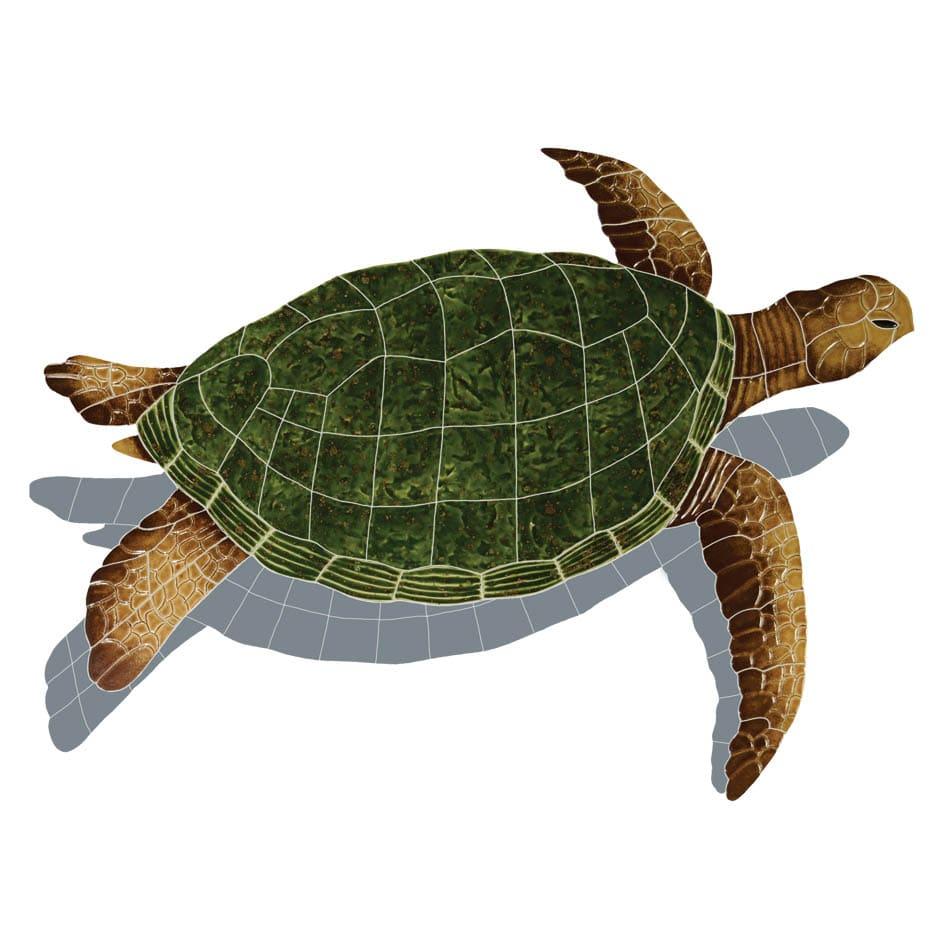 Sea-Turtle-lg-natural-shadow-2015