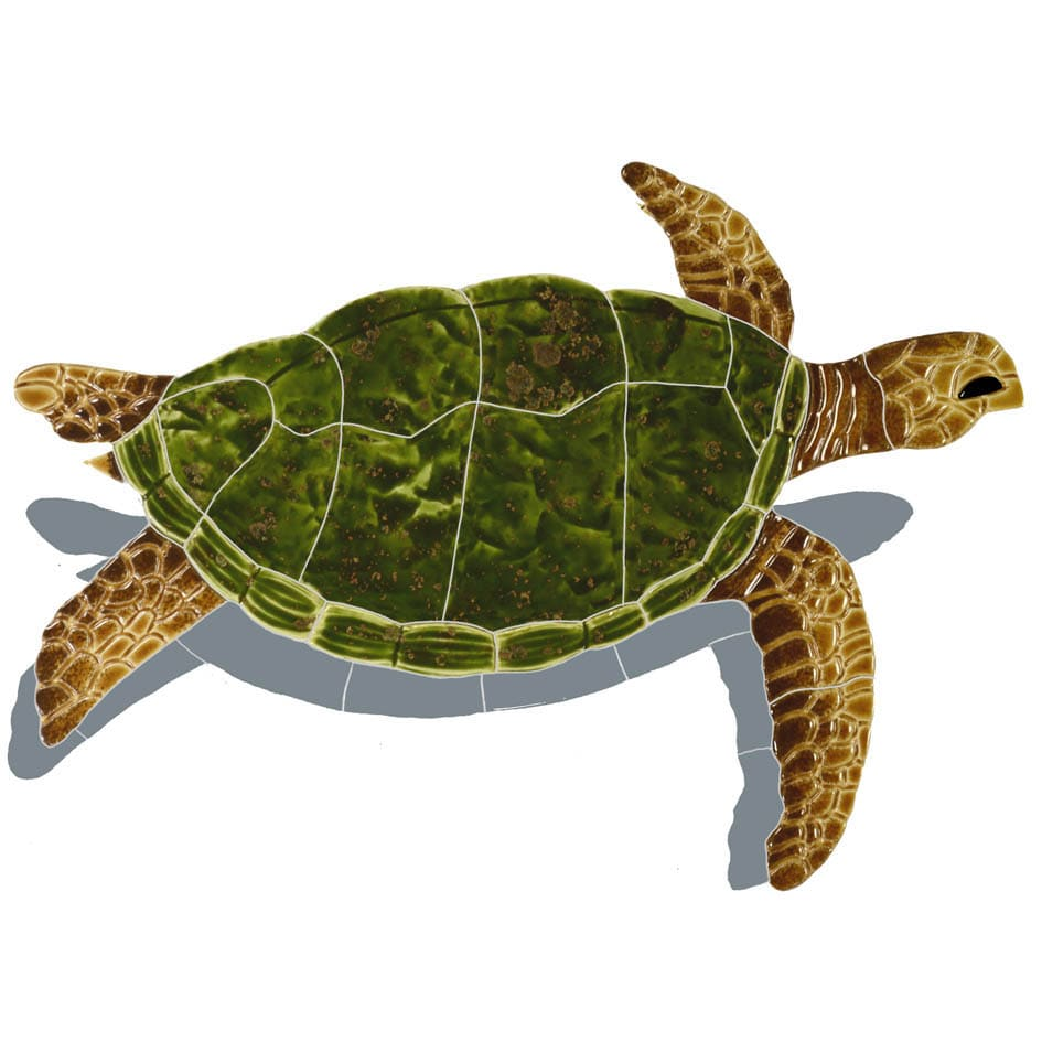 Sea-Turtle-small-natural-with-shadow-2015