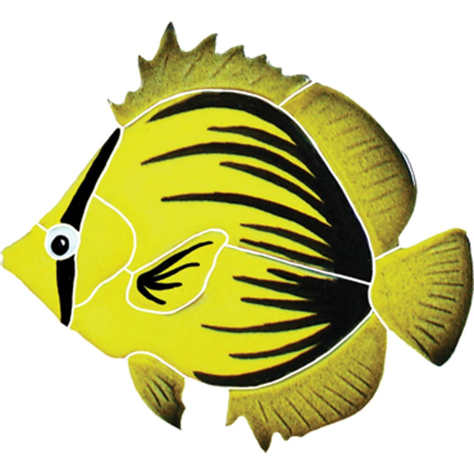 Spiked-Butterfly-fish