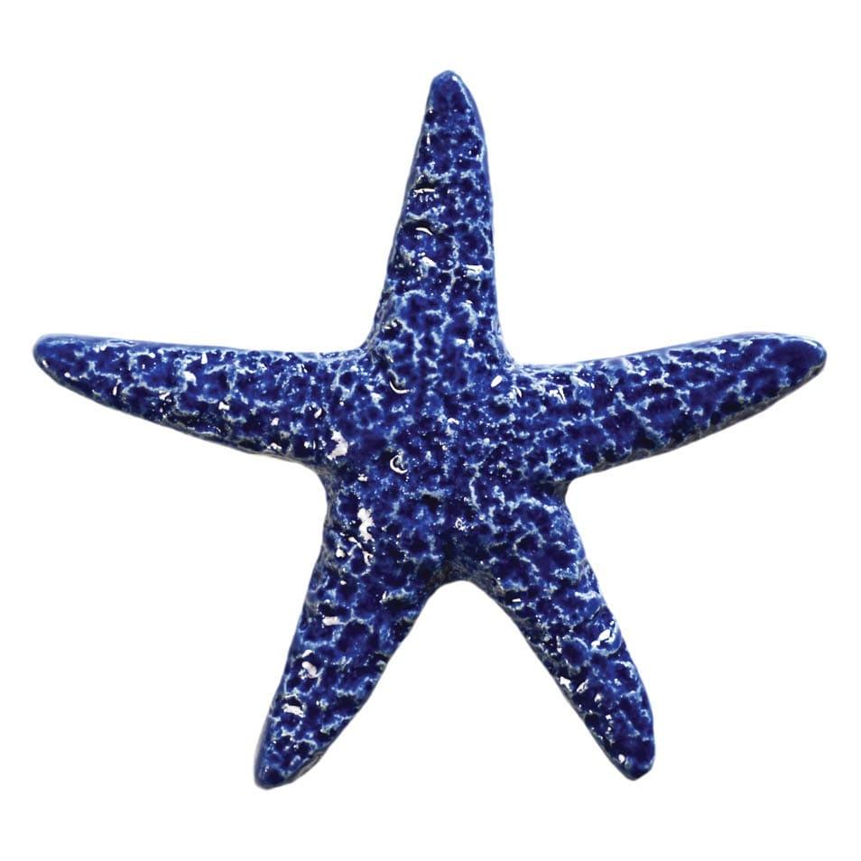Starfish-5in-Blue-STABLUB
