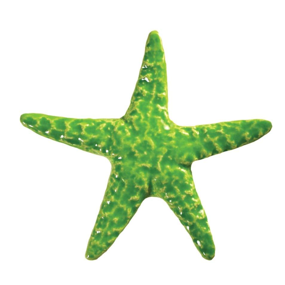 Starfish-lime