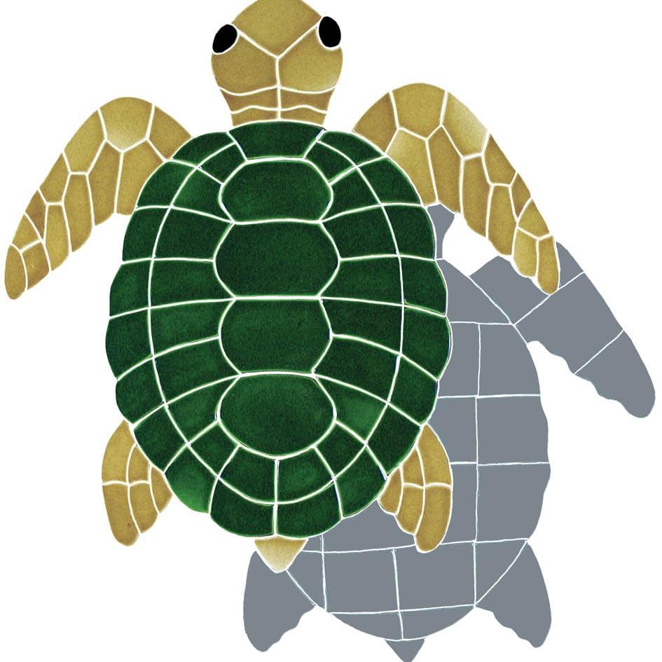 Turtle-shad-tv-lrg-natural-120413