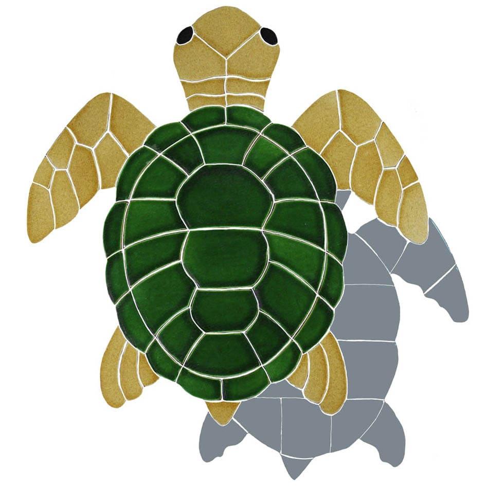 Turtle-shad-tv-med-natural