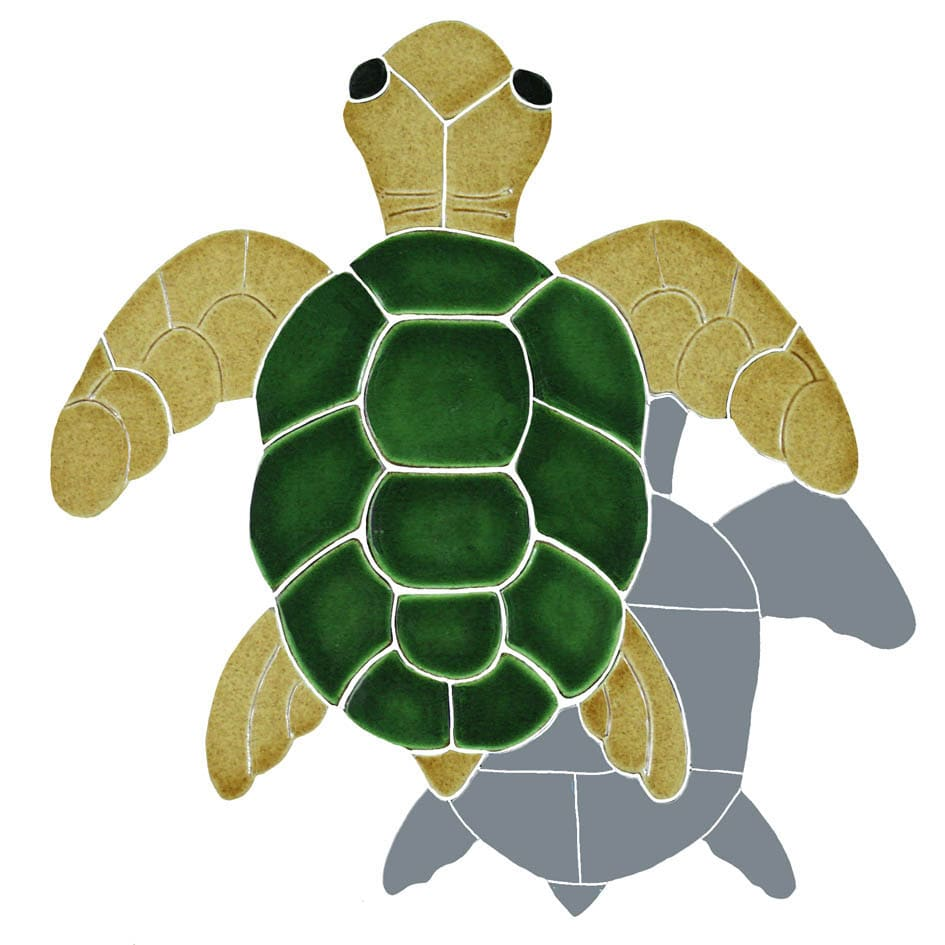 Turtle-shad-tv-sm-nat