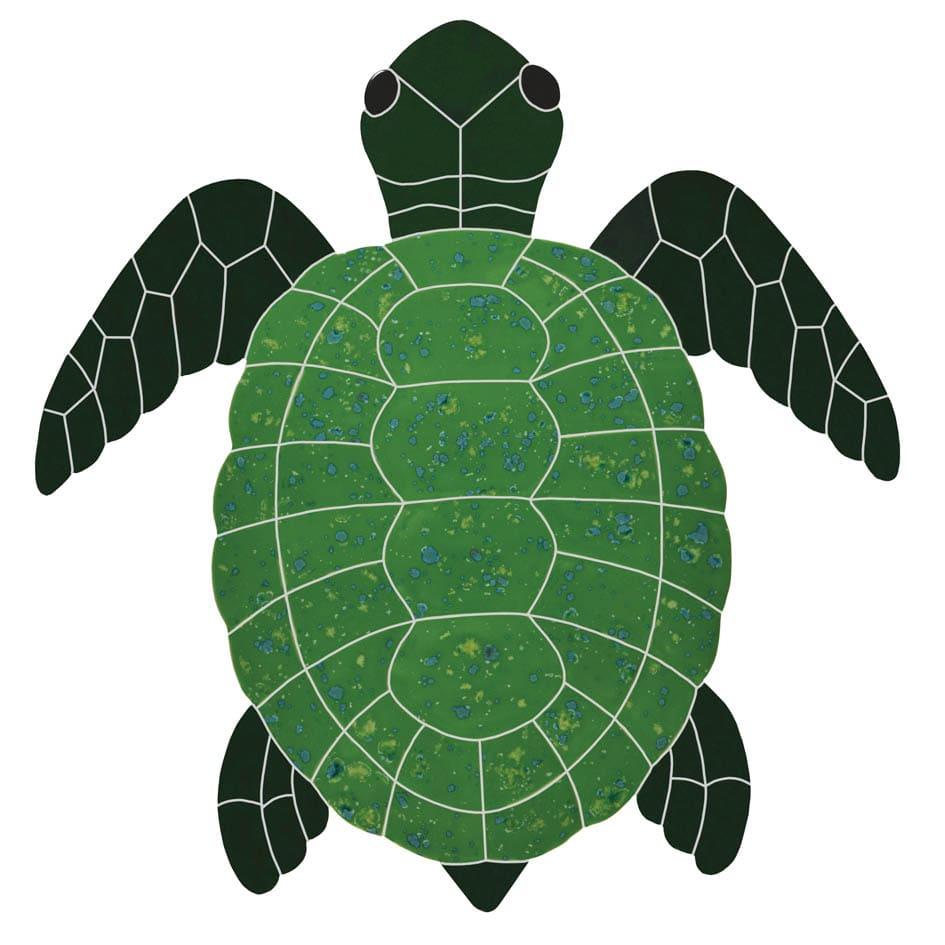 green-topview-turtle-TURGRETL